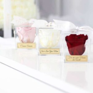 Mini Rose Acrylbox